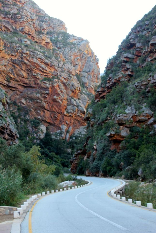 This is the beautiful road that gets you from Klaarstroom to de Rust...