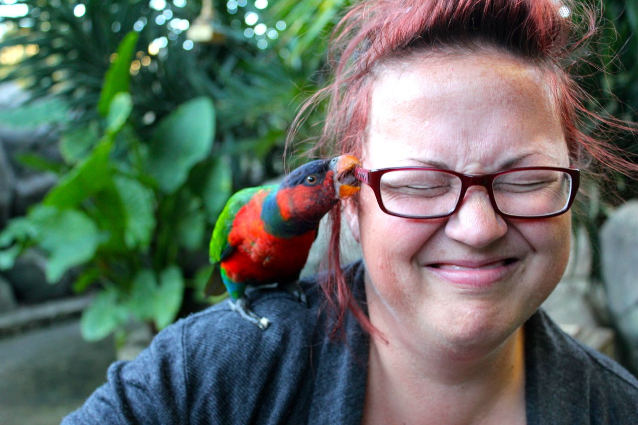 This bird gave Nick and the kids a LOT of laughs (at my expense)... it nibbled my glasses, but then started nibbling my ear... gradually nibbling harder and HARDER... every time I lifted my hand to swat him off, he bit my fingers! Nick was giggling (a lot) while taking this photo...