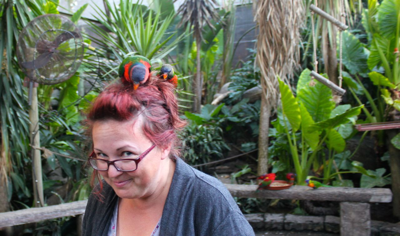 And... then there were the birds!!! They sat on my head - and the one bit my fingers, every time I tried to get him off!! hehe!