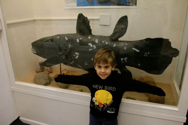 ... and another coelacanth (the last one we saw was at the East London museum)...