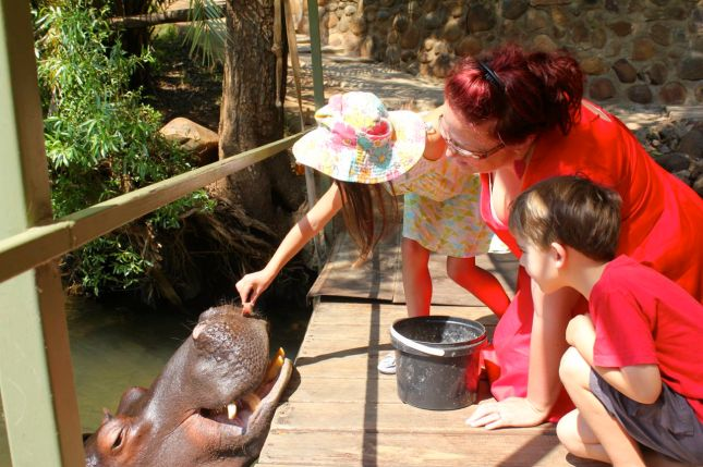 Fun with Jessica the hippo - during our 6-week South African Road Trip...