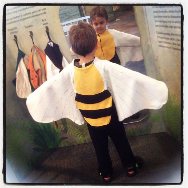 Joah discovered a bee outfit...