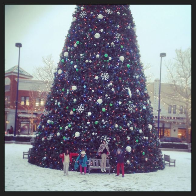 Big tree… and 4 happy kidlets...