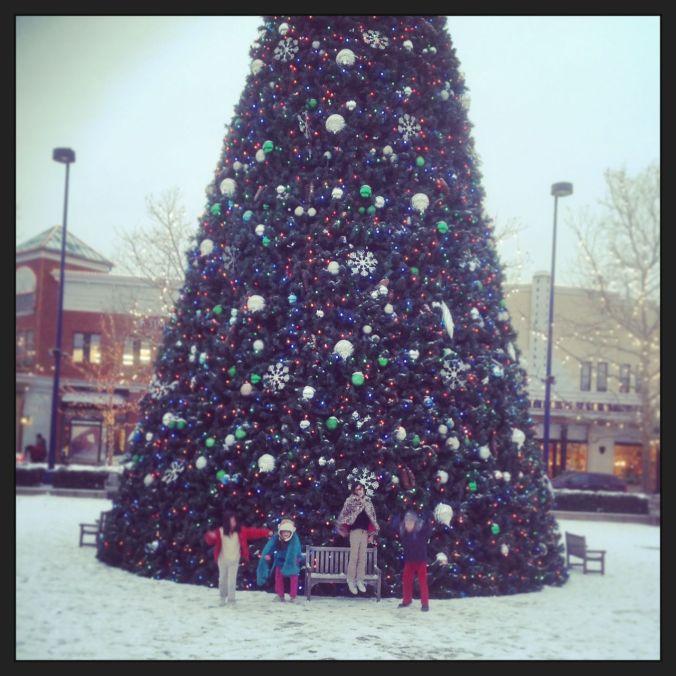 Big tree… and 4 happy kidlets...