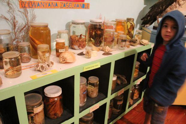 museum 5