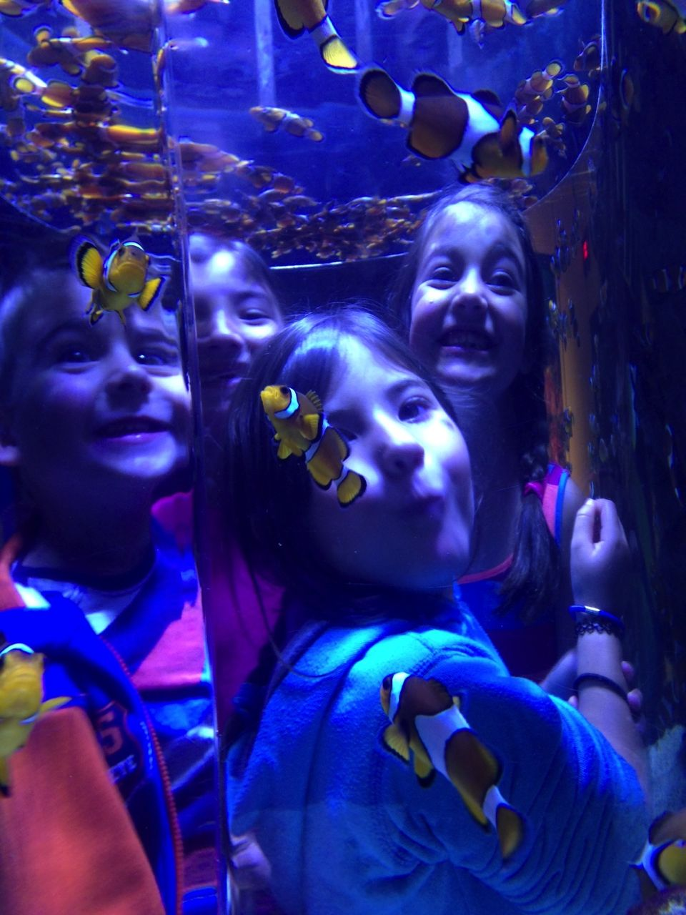 The cousins and the clown fish at the Cape Town Aquarium...