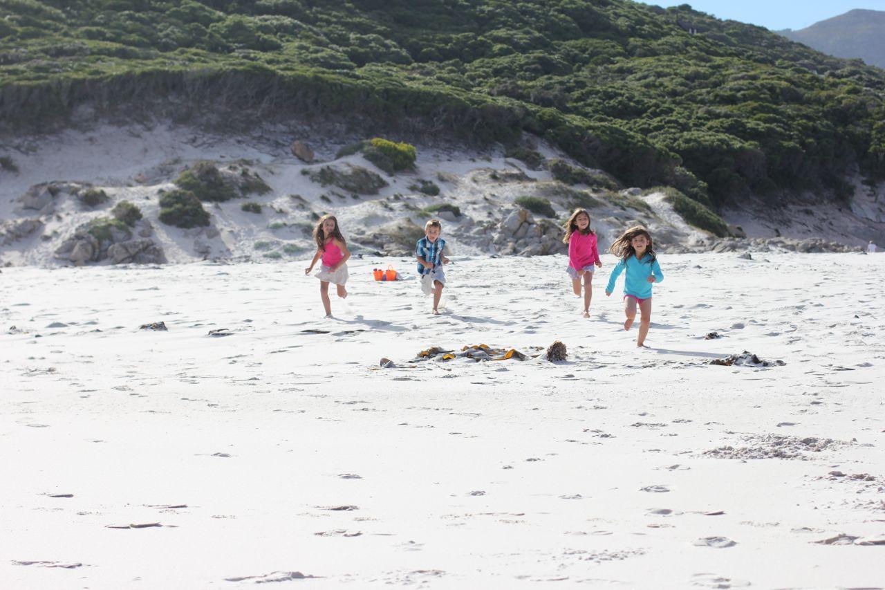 The 4 cousins high-speeding towards the sea...