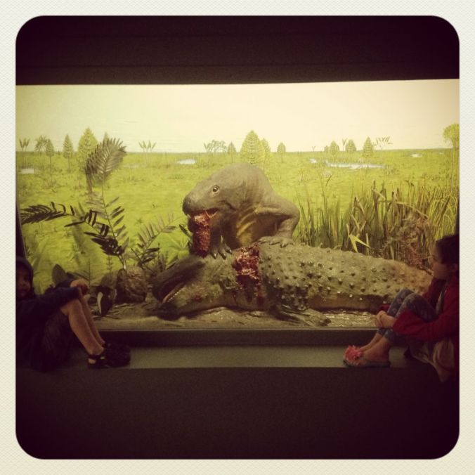 Dino dioramas at the South African Museum...