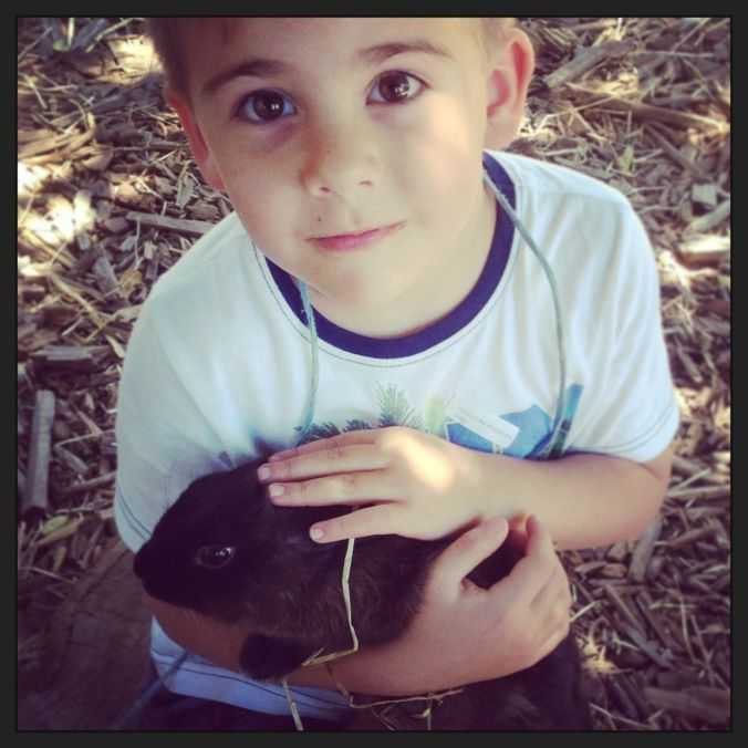 Bunny cuddles at Imhoff Farm...