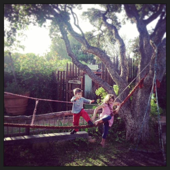 Rope bridge playground at an indigenous tree nursery that we found (close to Cape Point)...